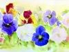 tableau-aquarelle-fleurs